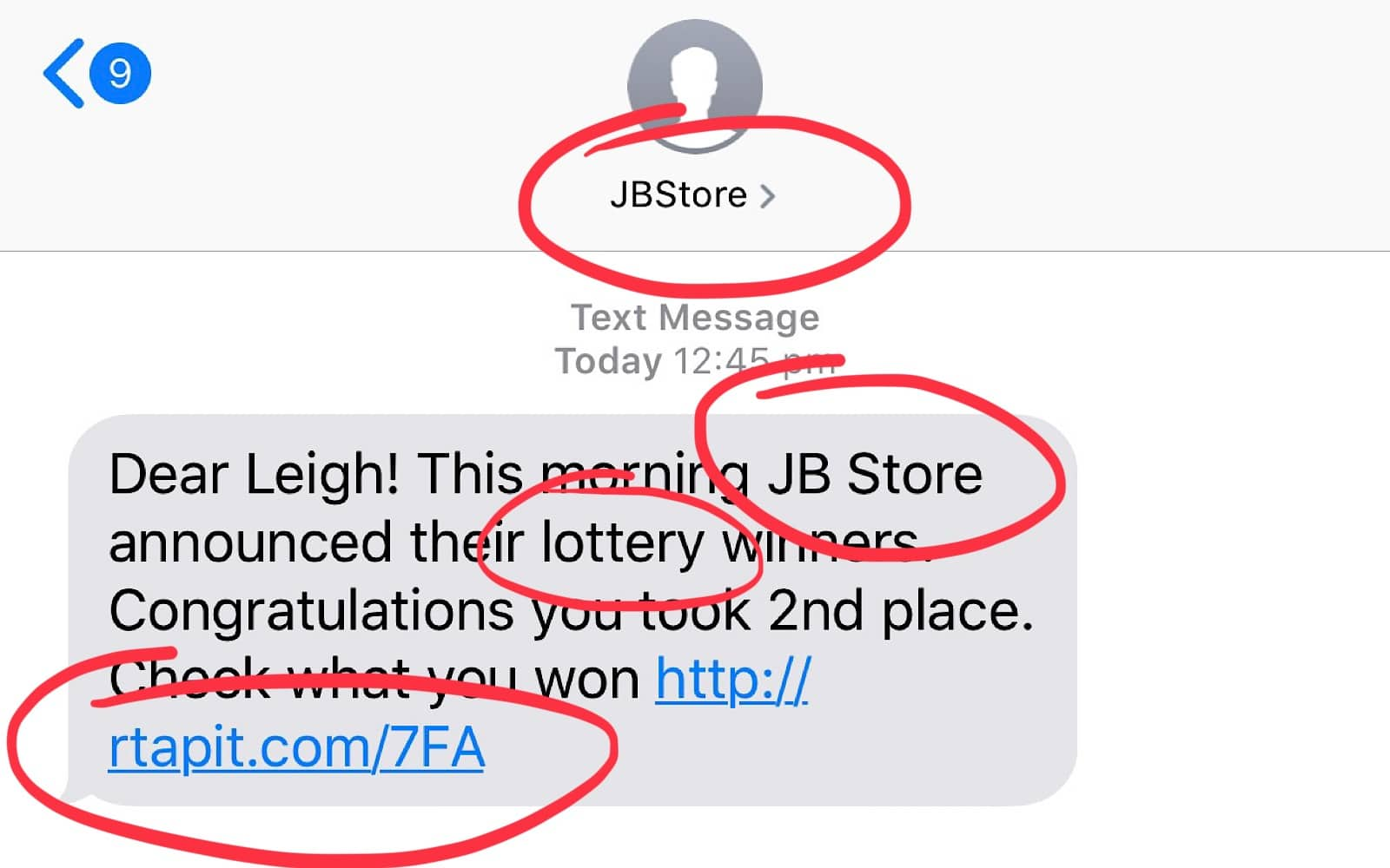 Some of the things worth paying attention to in a scam message.
