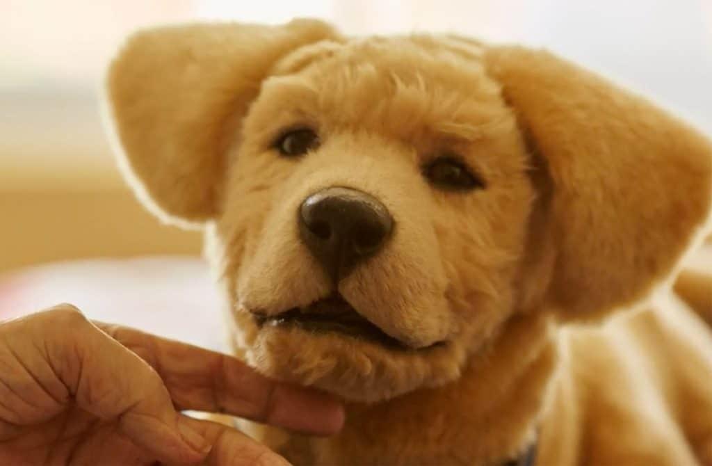 Tombot robotic companion dog